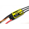 Regulador Brushless Hornet 100A SBEC 6A (1-6S LiPo)